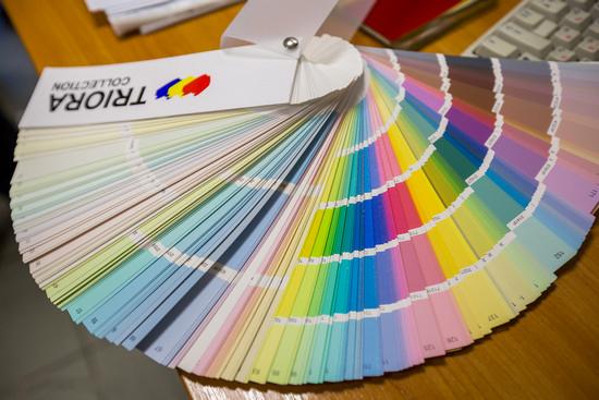 ТОП-6 самых модных цветов из каталога TRIORA